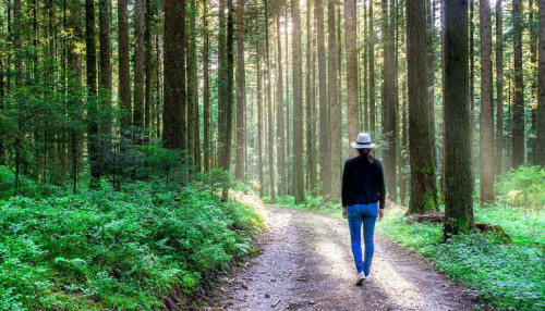 The Research-Backed Reasons You Need to Start Walking