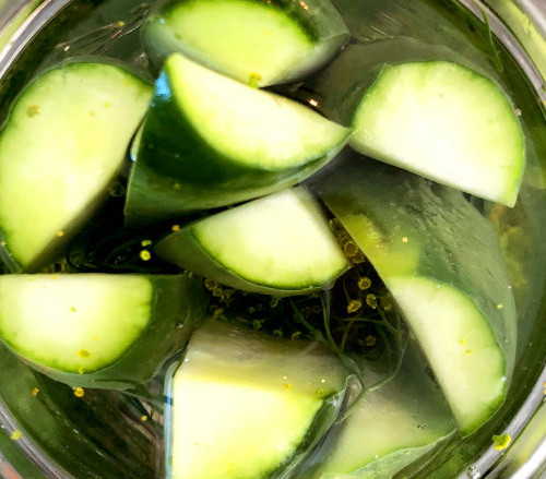 Easiest Refrigerator Dill Pickles